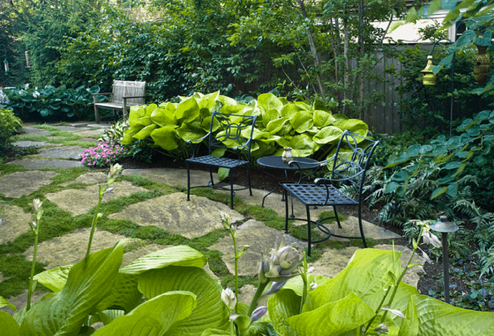 two black iron chairs in shaded patio garden