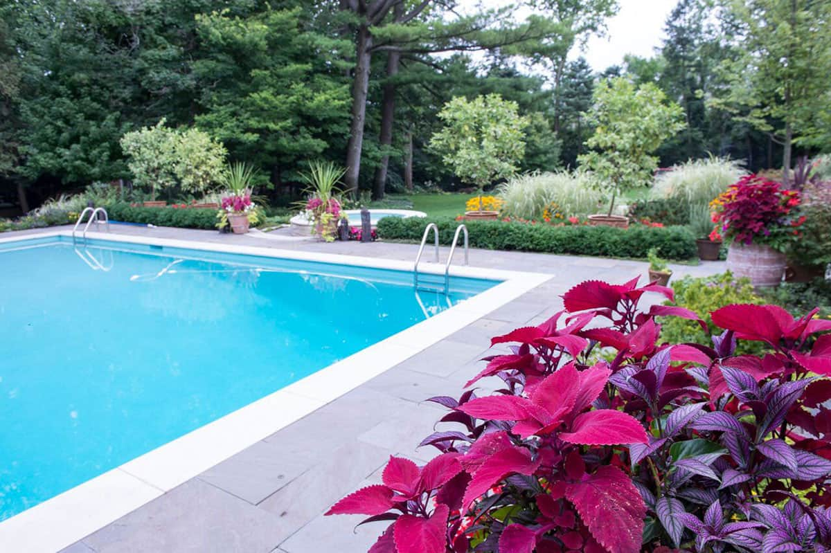 bluestone-pool-deck-limestone-coping